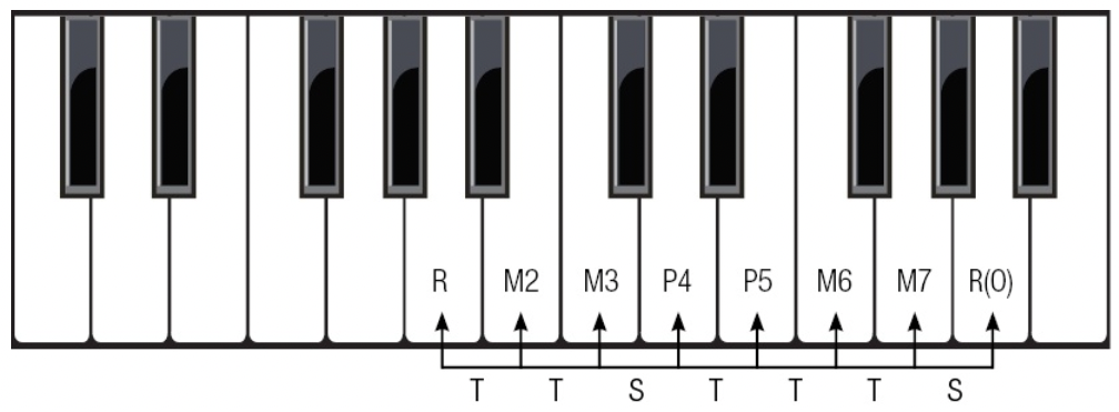 Major Scale Structure